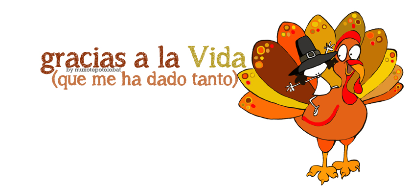 Acción de Gracias/ Happy Thanksgiving Day!!!