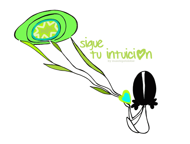 intuition web