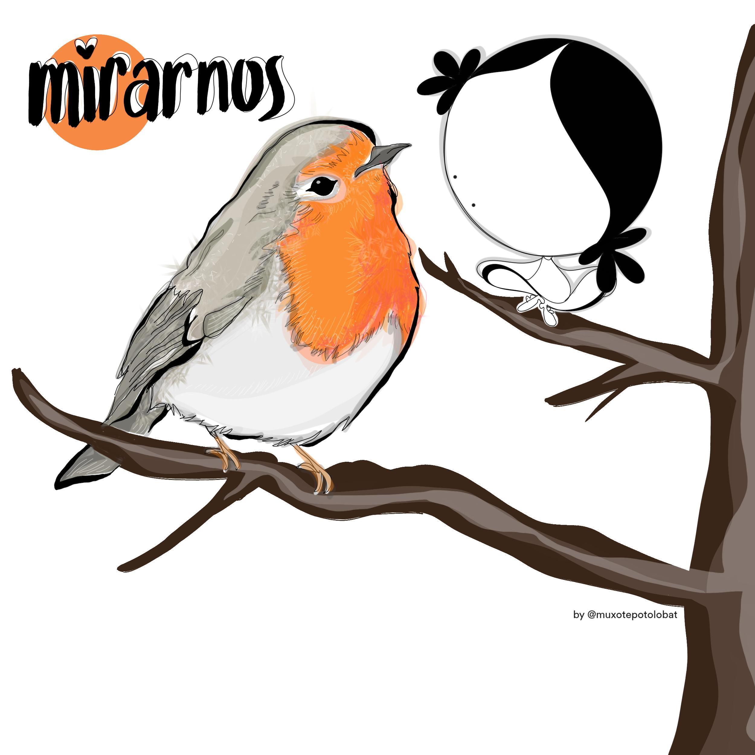 mirarnos by Muxote Potolo Bat
